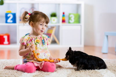 Child feeding dog by saugage at home